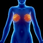 Ultrazvok dojk je najboljši pri zgodnjem odkrivanju raka